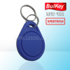 Крипитирани електронни ключове